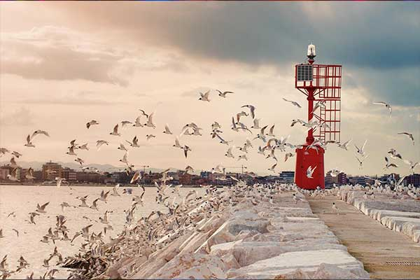 Rimini in inverno: il mare